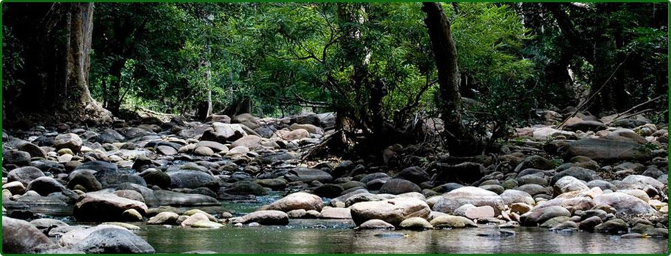 kerala tourism, massage,places,pictures, tour , travel , pilgrim ...